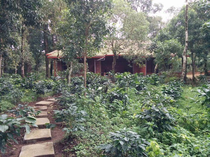 Three Wooded Acres near Madikeri / All meals