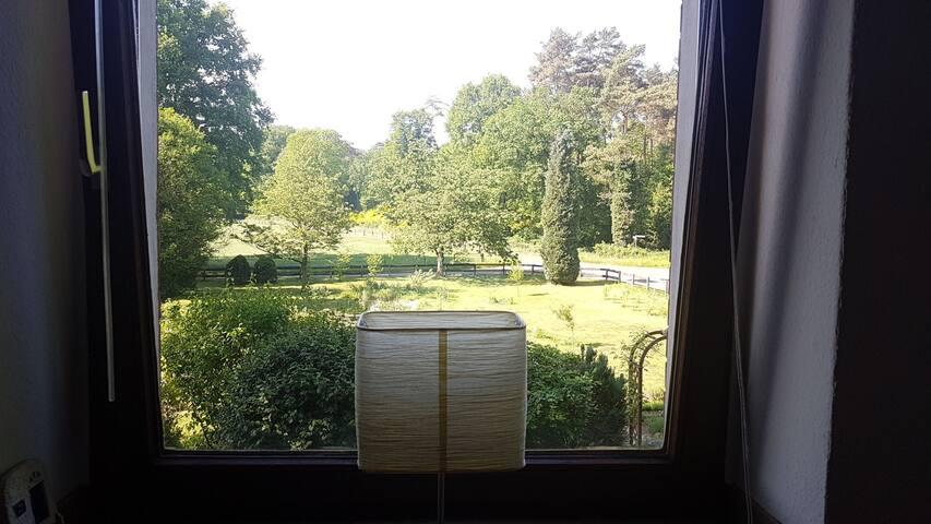 Aussicht aus dem Schlafzimmer in den Garten.