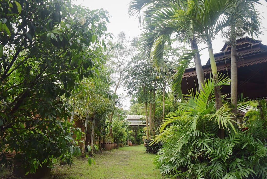 """The entrance to """"Baan Kern Homestay"""". Private space for your relax day."""