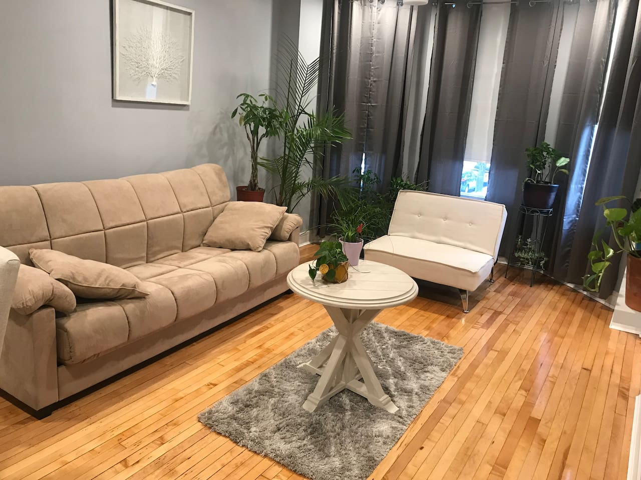 Comfortable Living Room with sofa-bed (full-size)