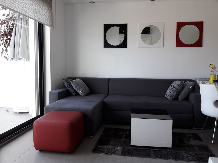Sofa bed (good for two)