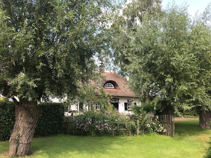 Rose Cottage B&B: Rust, Ruimte & Romantiek