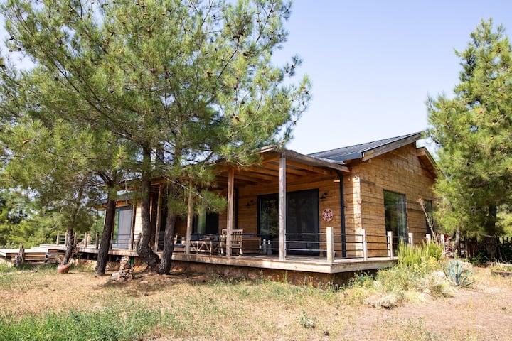 CASA TEONA/Luxury Cedarwood Secluded House Akyaka