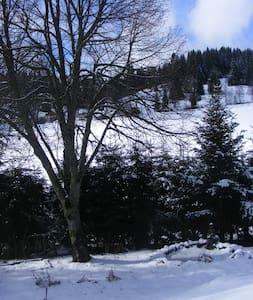 Haus Tannengarten - Eisenbach (Hochschwarzwald) - Osakehuoneisto