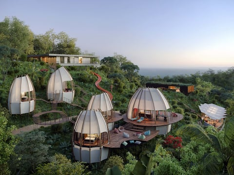 NEW exclusive pods CoCo 1 / ArtVillas Costa Rica