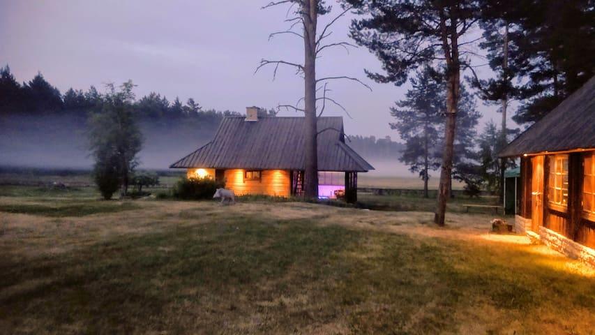 Petsi Sauna || Petsi Saun