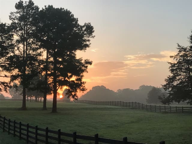 Glamping on a private horse farm