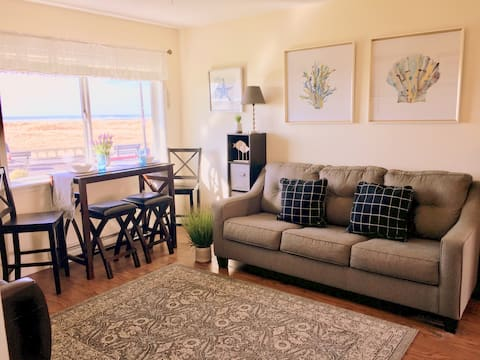 Beautiful Oceanfront One Bdrm (103)
