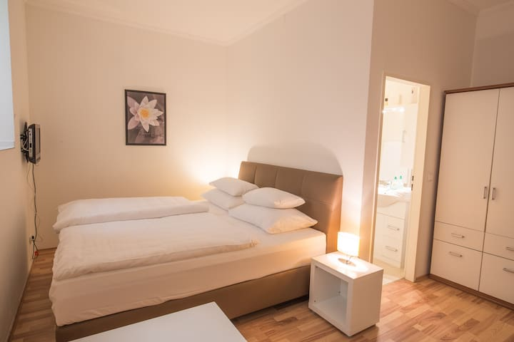 Economy Belvedere Studio Apartment - Wenen - Appartement