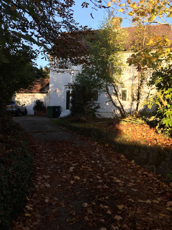 Large Cardiff Property Completely Private