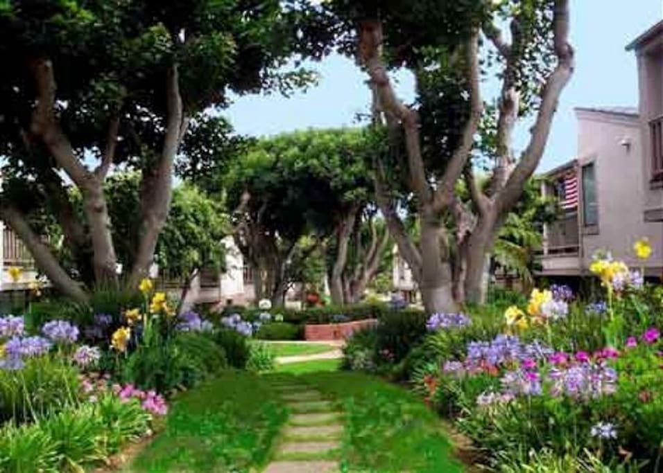 The beautiful grounds of Seascape Sur