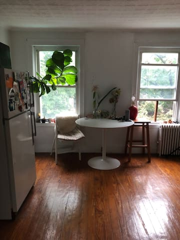 Private Studio Apartment in Carroll Gardens