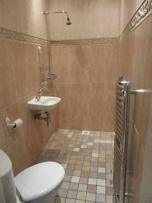 Ensuite wet room with toilet, shower and hand basin.