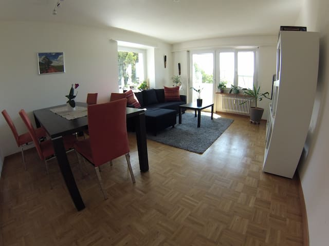 Quit appartement in charming Solothurn