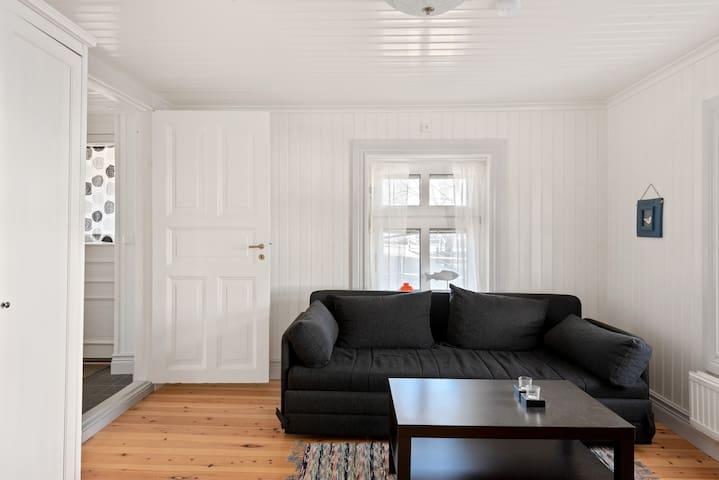 TV-rum med bäddsoffa (80cm bredd) bäddas längsgående