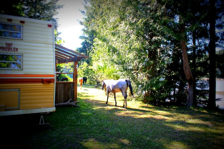 Trailer's Flow on Organic Seaside Farm - Salt Spring Island - Wóz Kempingowy/RV