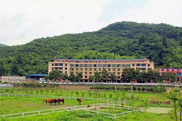 天然氧吧山沟沟黎鹰牧场度假酒店,身心灵放松的山景露台小木屋 - Hangzhou - Apartment
