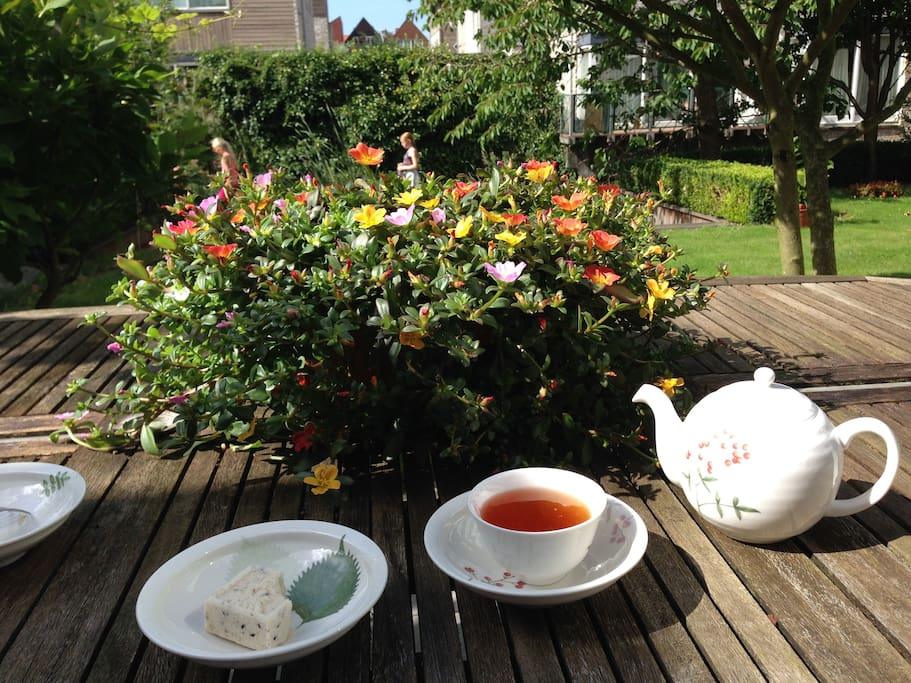 Enjoy my cup of tea