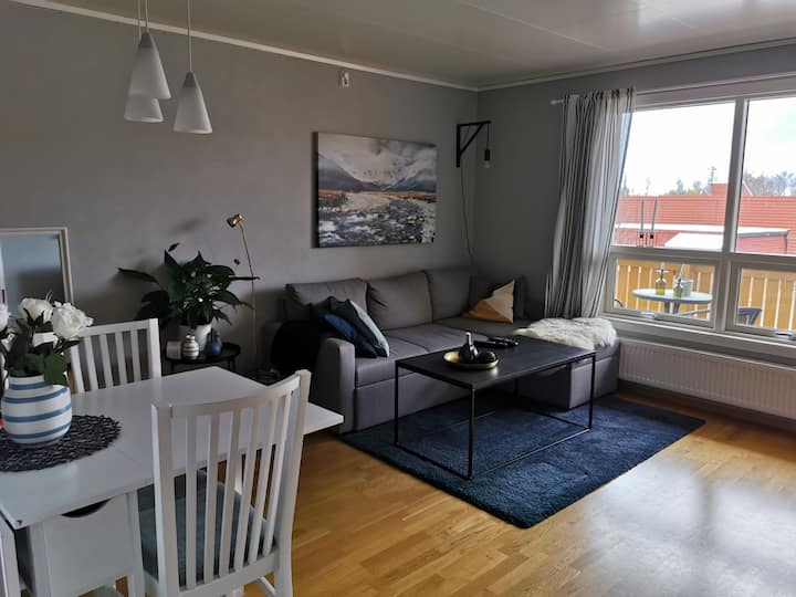 Great apartment in Trondheim