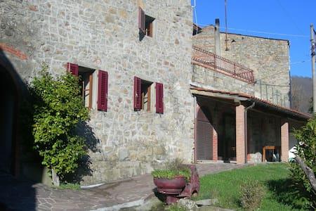 Casa il Gelsomino - Pescia