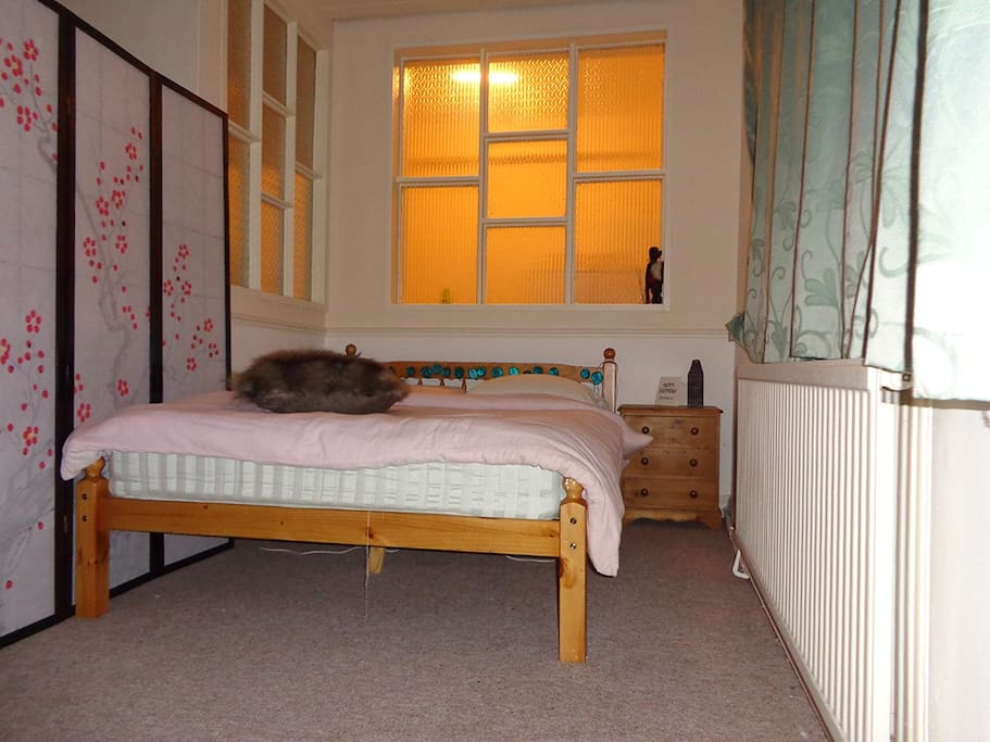 Double bed with plenty of natural light in quiet neighbourhood.