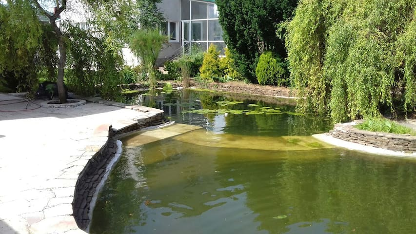 Cozy house. Beautiful garden and pond. - Odesa - House