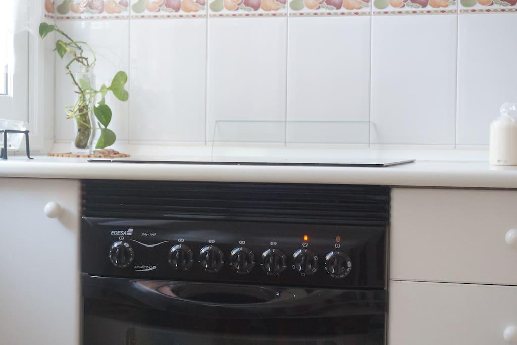 Placa eléctrica y horno