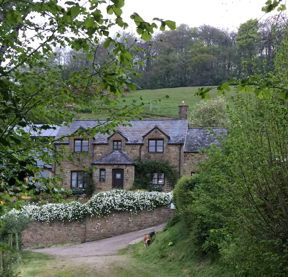 Rose Cottage and The Lodge are nestled into the gentle slopes of Huntley Hill.  There are lovely walks with spectacular, almost 360 views, towards the River Severn, The Cotswolds and The Forest of Dean. It is our secret paradise.