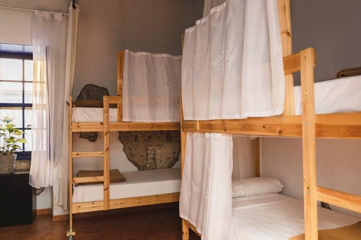 Ashavana Hostel/Habitación mixta 4 personas