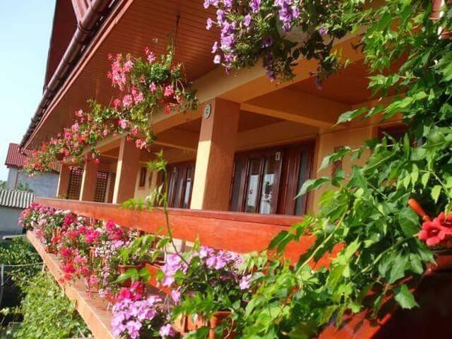 Casa Ecaterina 2 Mai