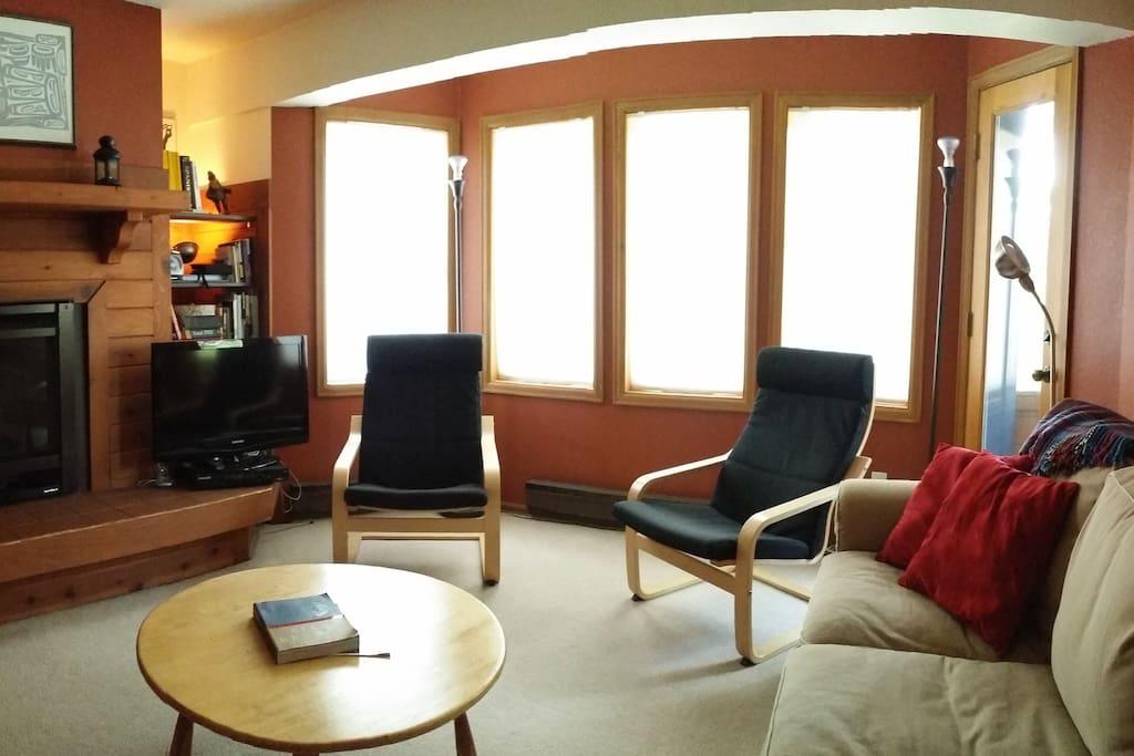 Living area, tv, bluray, fireplace.