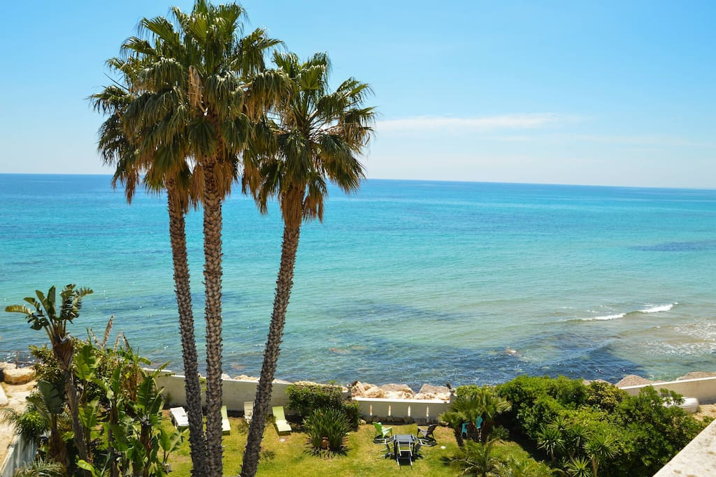 B b the terrace by the sea direct access sea bed for 103 merion terrace moraga ca