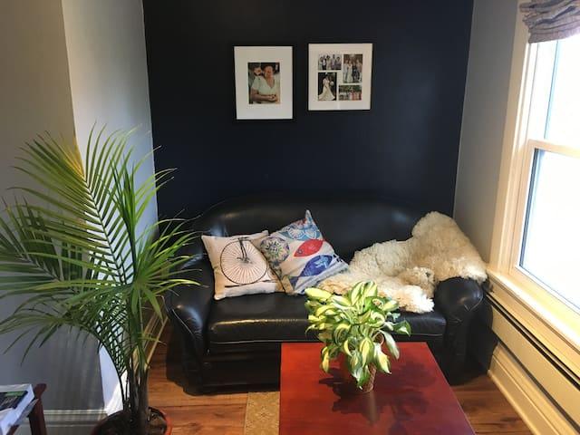 Private room in cozy apartment
