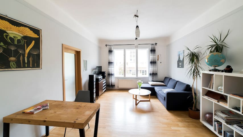 Bright Cosy Apt. near The Charles Bridge