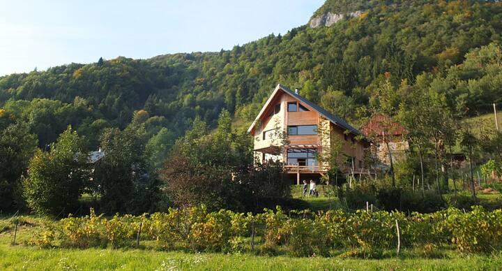 Maison bioclimatique bois/paille avec vue