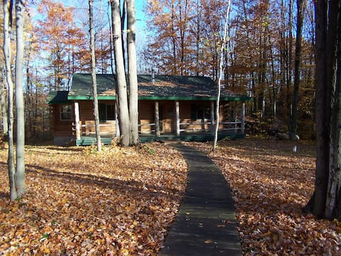 Secluded log cabin with acreage + all the comforts