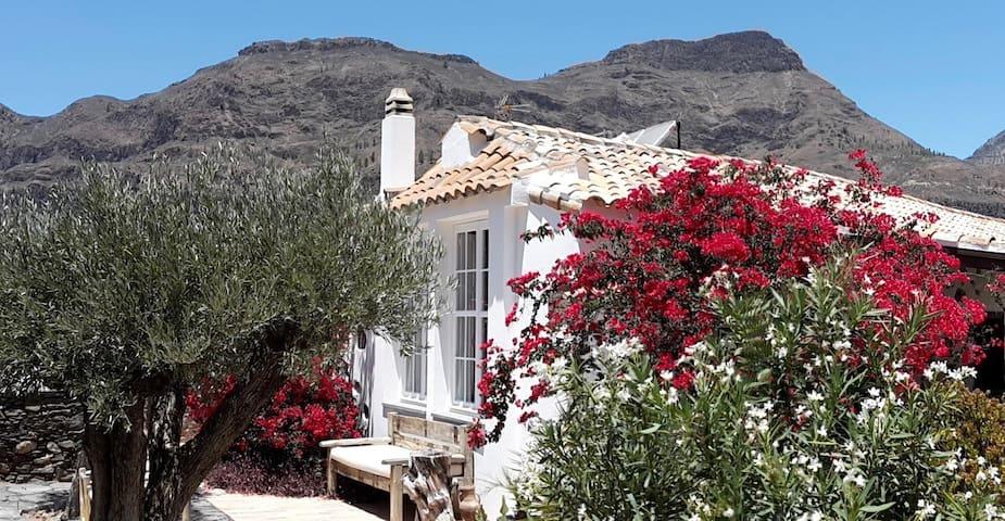 "Casa Rural ""Palomar"""