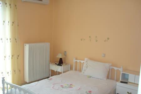 Μοναδικά λειτουργικό διαμέρισμα - Levádhia - アパート