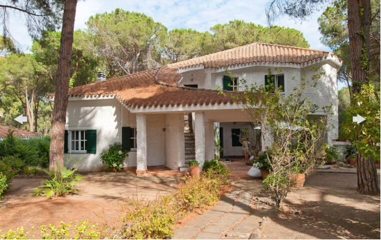 Villa Lavanda- 300 sqm Villa