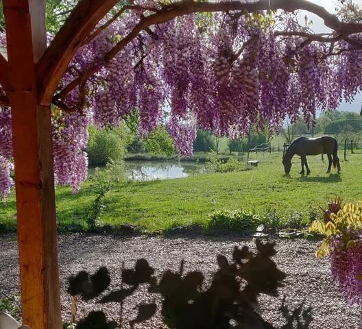 "Wunderschönes Bed & Breakfast ""Petit Paradis"""