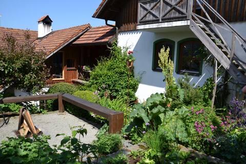 Vakantiehuis Waldesruh in de natuur