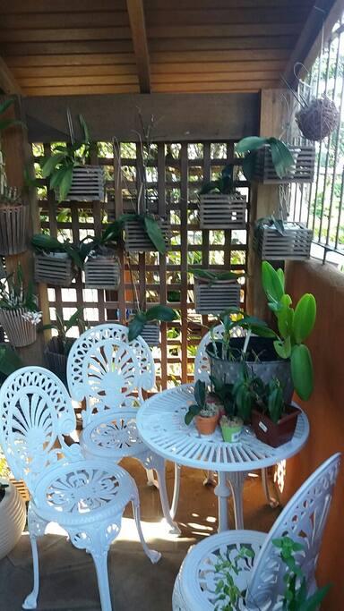 Jardim aconchegante.  Otimo local para ler um livro