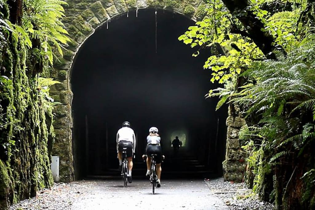 Heading into Ballyvoyle Tunnel on the Waterford Greenway- a few minutes cycle from here!