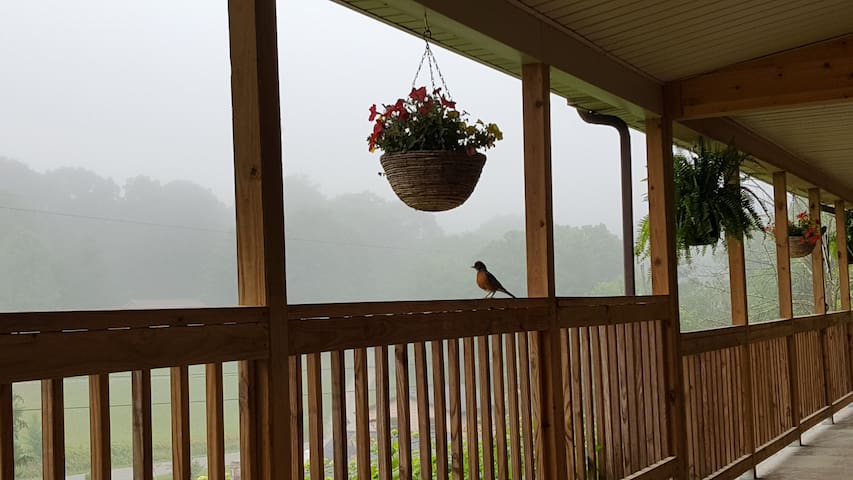 The Stonewood Acre, laid-back mountain vibe