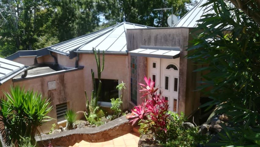 Petite chambre dans un bain de nature tropicale