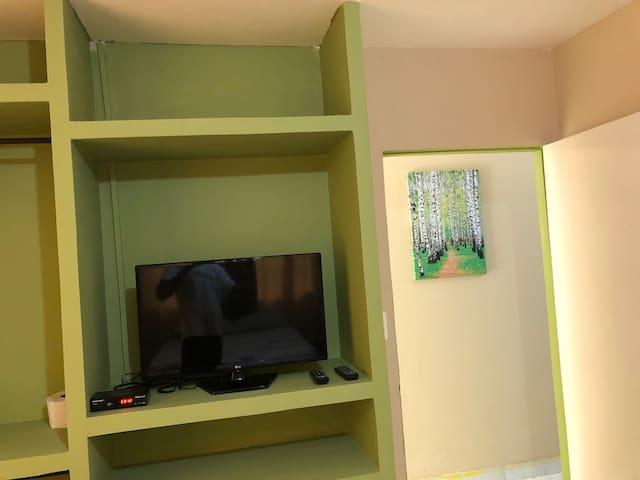 Televisor con pantalla plana