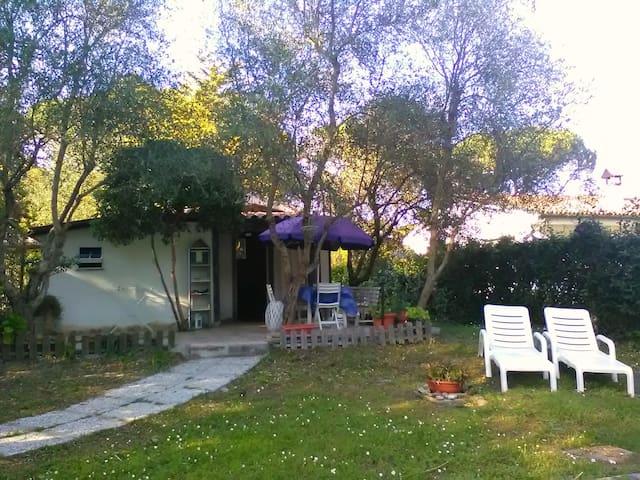 La casina di Baratti - Piombino - House