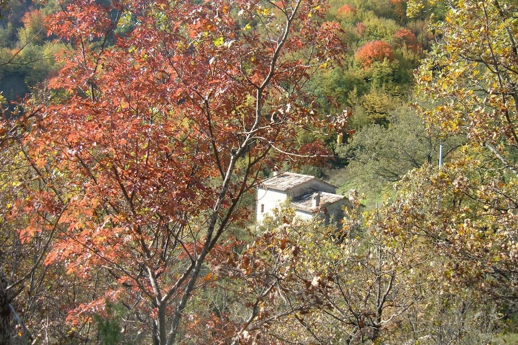 il Mulino in the fall