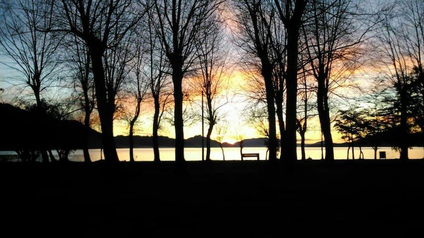 Cabaña al borde del Lago Calafquen - Conaripe - Talo