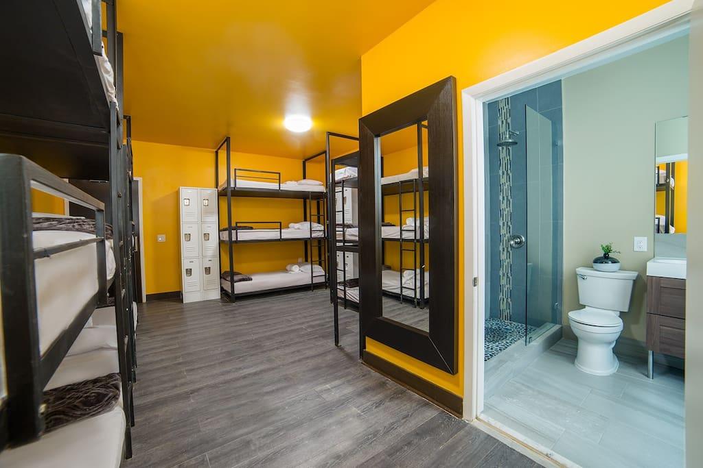 Newly Renovated Mix Standard Dorm